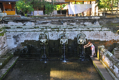 A lady washes herself at Goa Gajah. Elephant Cave, is located on the island of Bali near Ubud and a short distance from Bedulu. Built in the 9th century, it served as a sanctuary. A carved entrance depicts entangling leaves, rocks, animals, ocean waves and demonic human shapes running from the gaping mouth which forms the entrance to the cave. The facade of the cave is a relief of various menacing creatures and demons carved right into the rock at the cave entrance. The primary figure was once thought to be an elephant, hence the nickname Elephant Cave. The site is mentioned in the Javanese poem Desawarnana written in 1365. Inside the cave one finds the Shiva lingum.  The monstrous Kala head that looms above the entrance seems to part the rock with her hands. Similarly decorated hermit cells are also found in Java. The large earrings indicate that the figure is that of a woman. The T-shaped interior of the rock-hewn cave contained niches which probably served as compartments for ascetics.  Goa Gajah is named after Sungai Petanu (Elephant River not an elephant as elephants are not found in Bali) and dates back to the 11th Century where it originally served as a dwelling for Hindu priests. Outside the cave at the pavilion is a statue of Men Brayut, the Balinese woman who together with her husband Pan could not stop having kids. The legend of Men Brayut is also represented in local Buddhist writings, under the name of Hariti, indicating a possible Buddhist association with Goa Gajah as well as Hindu.  Outside the cave, an extensive bathing place on the site was not excavated until the 1950s. These appear to have been built to ward off evil spirits. It is an UNESCO World Heritage site.