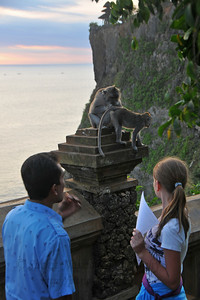 Inspection time! Monkey style. Pura Luhur Uluwatu, Bali.  Pura Luhur Uluwatu is one of Bali's kayangan jagat (directional temples) and guards Bali from evil spirits from the south-west. Major Hindu deities dwell in Uluwatu such as - Bhatara Rudra, God of the elements and of cosmic force majeures. Bali's most spectacular temples located high on a cliff top at the edge of a plateau 250 feet above the waves of the Indian Ocean. Uluwatu lies at the southern tip of Bali in Badung Regency. Dedicated to the spirits of the sea, the famous Pura Luhur Uluwatu temple is an architectural wonder in black coral rock, beautifully designed with spectacular views. This is a popular place to enjoy the sunset. Famous not only for its unique position, Uluwatu also boasts one of the oldest temples in Bali, Pura Uluwatu. Most of Bali's regencies have Pura Luhur (literally high temples or ascension temples) which become the focus for massive pilgrimages during three or five day odalan anniversaries. The photogenic Tanah Lot and the Bat Cave temple, Goa Lawah, are also Pura Luhur. Not all Pura Luhur are on the coast, however but all have inspiring locations, overlooking large bodies of water.  Uluwatu is a small village on the west coast, south of Jimbaran, but for most visitors it refers only to the famous temple of the same name and several kilometers further south at the coast. A taxi from Kuta to Uluwatu takes about 30 minutes up and down winding roads.  The temple is inhabited by large number of monkeys, who are extremely adept at snatching visitors' belonging, including bags, cameras and eyeglasses. One has to keep a very close grip on all your belongings. Anu carried a stick like some others and I carried my tripod. :) If you do have something taken, the monkeys can usually be induced to exchange it for some fruit. Needless to say, rewarding the monkeys like this only encourages them to steal more. Locals and even the temple priests will be happy to do the job for you, naturally in