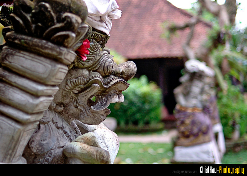 Life in Bali 2