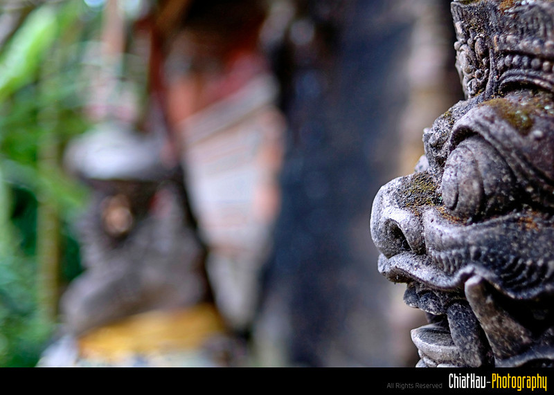 Life in Bali 1