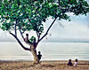 Children+in+Tree-Lovina-Bali+I-1180776885-O