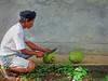 Cutting+coconuts-734599245-O