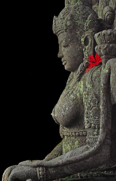 Goddess of boobies II