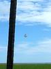 Sailboat kite!