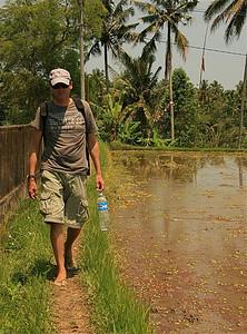 Balancerend tussen de rice paddies. Campuan Ridge Walk. Ubud, Bali, Indonesië.