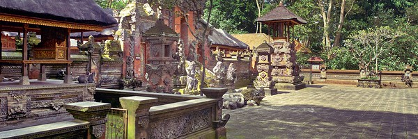 Monkey Temple - Ubud