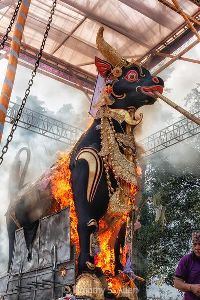 Burning the Body