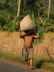Krachtpatser. Amlapura, Bali, Indonesië.