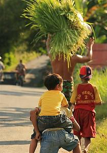 Volg papa! Amlapura, Bali, Indonesië.