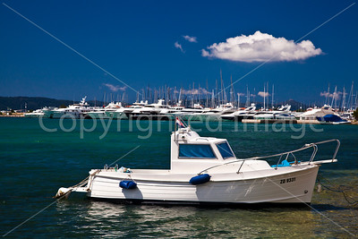 Fishing boat and  yachts