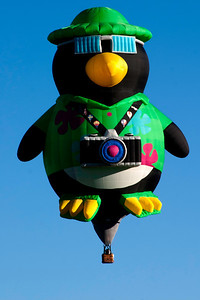 Sno-Bird AKA Waddles