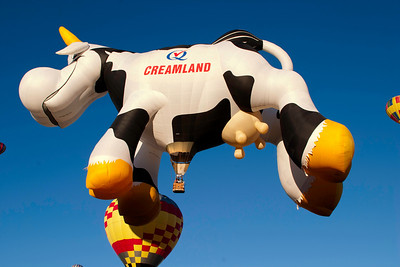 Airabelle, The Flying Cow, from Canada