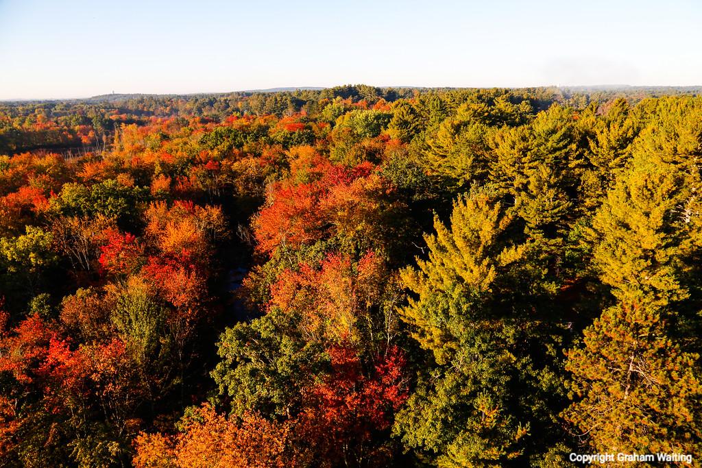 Fall in sight