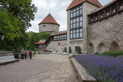 Outside the Neitsitorn Museum in Tallinn, Estonia.