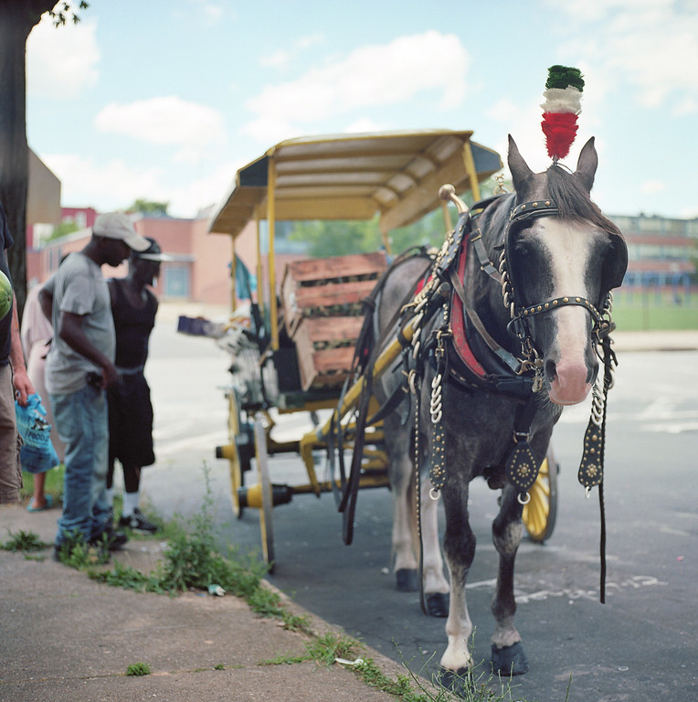 Baltimore arabber and fruit cart in West Baltimore