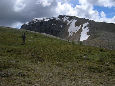 More alpine meadow above Harvey pass.: We will climb the ridge to the right and than up the back side of Mt Bourgeau, about 1600 feet up from here.