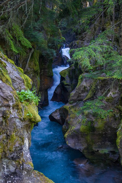 Avalanche Creek, Glacier National Park. Taken from the Trail of the Cedars foot bridge. The falls are only about a 1/4 mile walk from the main park road.