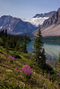 Bow Lake as seen from the Icefields Parkway road edge. Crowfoot Glacier is the Icefield shown here..