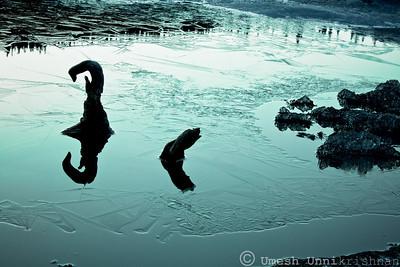 Frozen Lake Louise