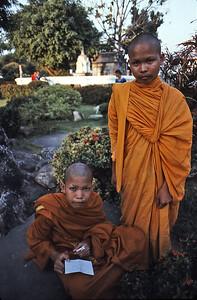 Wat Arun novices
