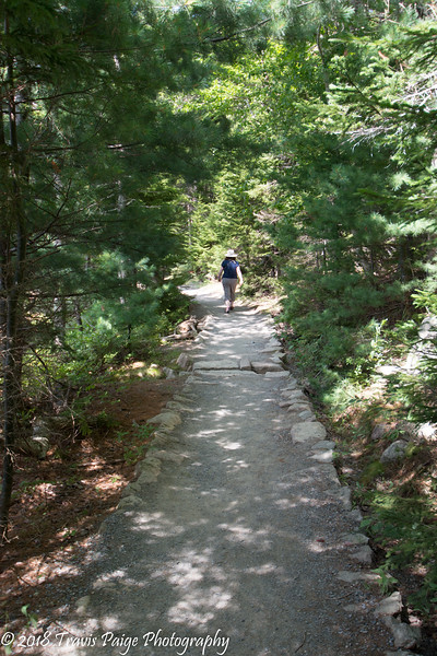 Path around Jordan Pond