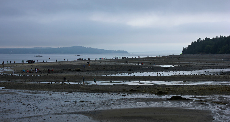 At low tide, a land bridge connects the mainland with one of the islands at Bar Harbor.  There are a lot of folks who take the opportunity to walk across to the island.  The advice is not to stay too long as when the tide comes back in the bridge disappears under the water.