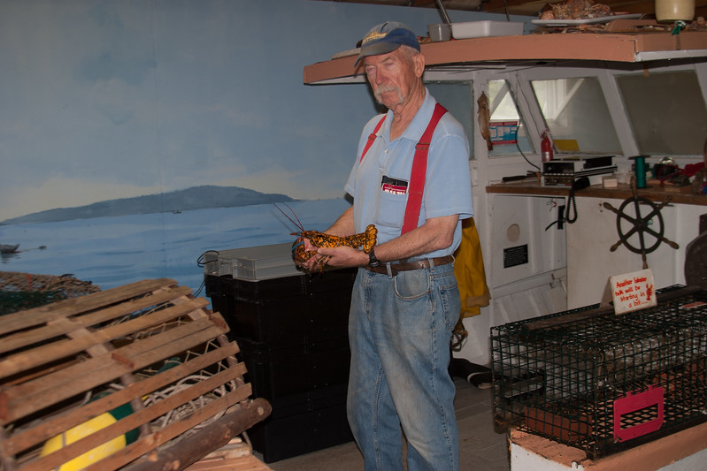 Lobsterman with Calico Lobster