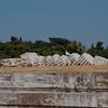 Fallen column at the Temple of Zeus