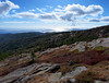 The View from Cadilac Mountain.   Acadia National Park takes up most of the east side of Mt. Desert Island.  Grand Loop Road provides access to most inland and coastal areas of the park.  A side road climbs Cadilac Mt.