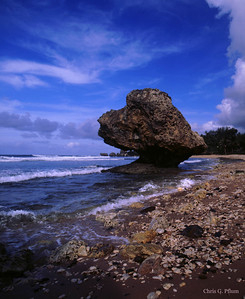 Barbados, West Indies -  North Shore