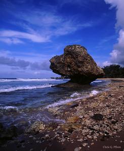 Barbados, West Indies -  North Shore