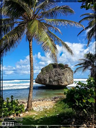 Barbados 2014