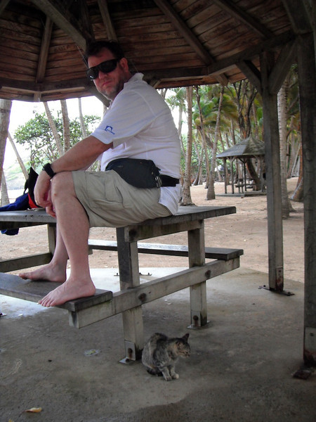 Staying dry on Grande Anse, Iles des Saintes, French West Indies, with my friendly neighborhood kitten.