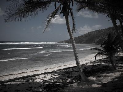 Barbados (2015): Highlights