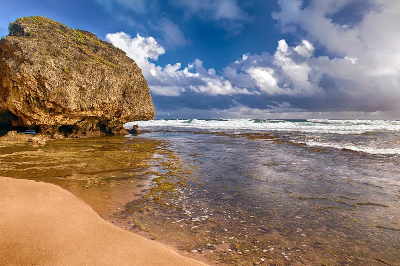 Along the Eastern Coastline of Barbados - Landscape