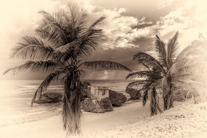 Bathsheba, Barbados -Antique Filter