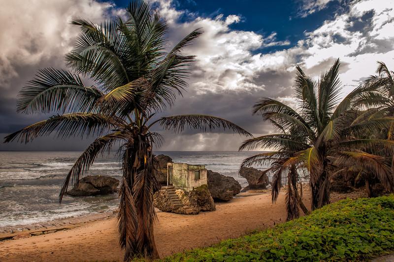 Bathsheba Coast in the morning