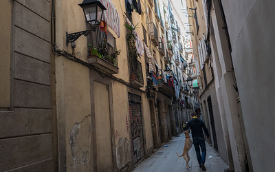 Walking the dog in Barrio Gotico, Barcelona