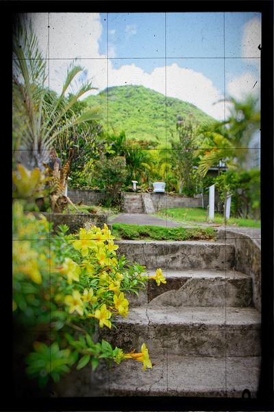 St Kitts - Nirvana