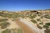 Parque Natural de las Bardenas Reales (13)