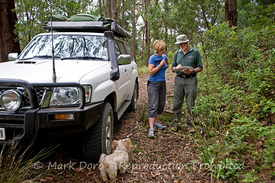 Checking the map, Barrington Tops, NSW