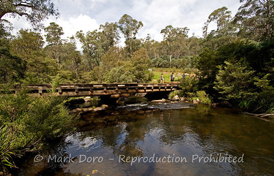 Bridge over the Manning River, Barrington Tops, NSW