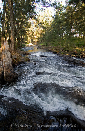 Cobark River, Barrington Tops, NSW