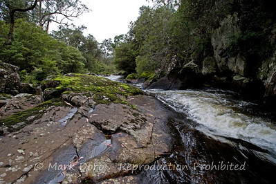 Manning River, Barrington Tops, NSW