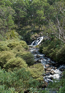 Falls on the Manning River, Barrington Tops, NSW