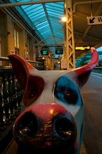 Station Pig