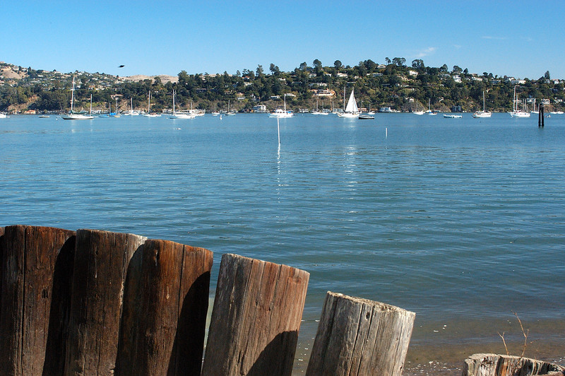 Located across the bay from San Francisco, Sausalito is very quiet and peaceful on a Sunday afternoon.