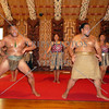 Waitangi cultural performances in Bay of Islands, New Zealand.