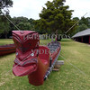 Maori War Canoe and its carved head symbol.