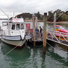 Boat is docked at the pier of Paihia Village wharf in Bay of Islands, New Zealand.
